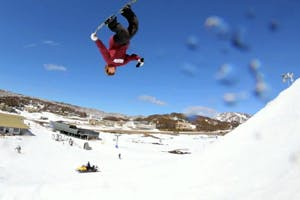 Shredbots at Perisher
