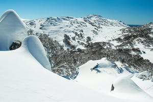 Powder Day Guide: Perisher