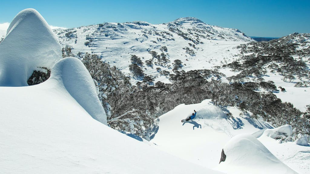Powder Day Guide: Perisher - primary image