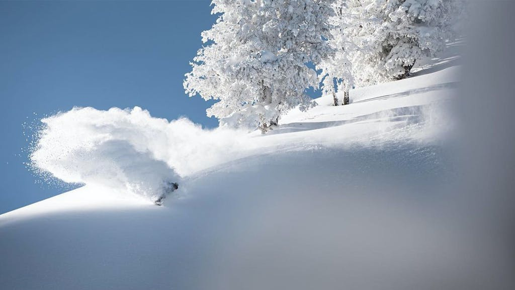 X Games: Real Snow 2021 - primary image