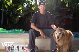 Andrew Reynolds Skates For Vans
