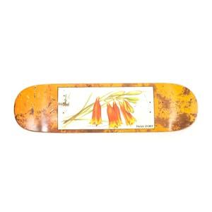 """PASS~PORT Tin Floral 8.25"""" Skateboard Deck - Bells"""