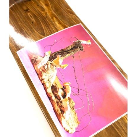 PASS~PORT Cockies Skateboard Deck - Callum