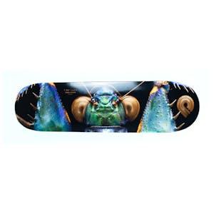 "Powell-Peralta Bark Mantis 8.75"" Skateboard Deck"