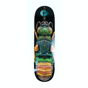 "Powell-Peralta Ruby Tailed Wasp 8.5"" Skateboard Deck"